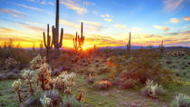 Hummer Night Tour in the Sonoran Desert, Phoenix, 4WD, ATV & Off-Road Tours