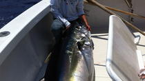 Fishing for Marlin and Tuna, Big Island of Hawaii, Fishing Charters & Tours