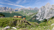 Pyrenees Mountains Private Day Trip from Barcelona, Barcelona, 4WD, ATV & Off-Road Tours