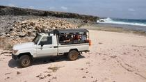 National Park Jeep Safari, Curacao, Nature & Wildlife