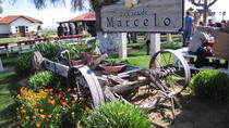 Ojos Negros Valley Wine and Cheese Route Tour in Baja California, Ensenada, Wine Tasting & Winery ...