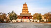 Private Tour: Terracotta Warriors, Shaanxi History Museum, and Big Wild Goose Pagoda, Xian, Private...