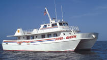 Deep Sea Fishing Day Tour from Orlando, Orlando, Day Trips