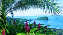 Manuel Antonio National Park, Jaco, Day Trips