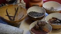 Discover Mexico Park: The One and Only Cacao Workshop, Cozumel, Food Tours