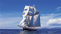 Bay of Islands Tall Ship Sailing on R. Tucker Thompson including BBQ Lunch, Bay of Islands, Sailing...