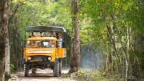 Cancun Jungle Tour: Tulum, Cenote Snorkeling, 4x4 Ride and Ziplining, Cancun, Cultural Tours