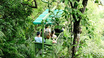 Aerial Tram Tour in Gamboa, Panama City, Eco Tours