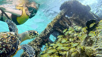 Reef and Shipwreck Snorkeling Tour in Cancun, Cancun