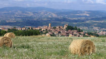 Private Tour: Wine and Châteaux in the Beaujolais, Lyon, Half-day Tours