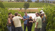 Yarra Valley Wine and Winery Tour from Melbourne, Melbourne, Dining Experiences