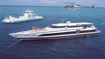 Cairns Super Saver: Great Barrier Reef Cruise plus Kuranda Scenic Railway plus Cape Tribulation Day ...