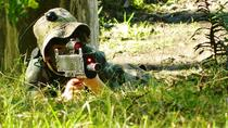 Laser Skirmish at Glenworth Valley Outdoor Adventures, New South Wales, Nature & Wildlife