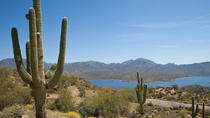 Sonoran Desert Adventure from Phoenix, Phoenix, Segway Tours