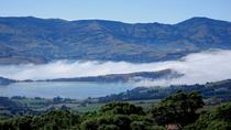 Akaroa Harbour and Banks Peninsula Eco Marine Harbour Cruise Small Group Tour, Christchurch, Swim ...