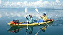 Full Day Kayak Mangroves Snorkeling Adventure, Puerto Jiménez, Kayaking & Canoeing