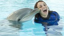 Mediterraneo Park: Swim with Dolphins Experience, Malta