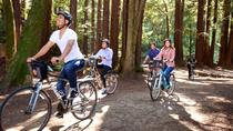 San Francisco Independent Bike or Electric Bike Tour with Rental, San Francisco, Bike & Mountain ...