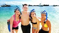 Moreton Island Snorkel and Sand Boarding 4WD Day Trip from Brisbane, Brisbane