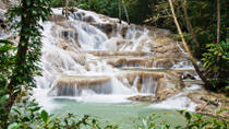 Jamaica Combo Tour: Dunn's River Falls and Bob Marley's Nine Mile , Montego Bay, Day Trips