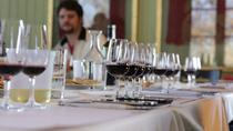 High-End Wine Tasting Experience in Mendoza, Mendoza, Wine Tasting & Winery Tours
