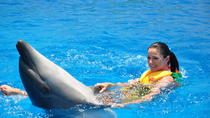 Swim with Dolphins for 15 Minutes in Sharm el Sheikh, Sharm el Sheikh, Swim with Dolphins