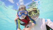 Rock 'n Roll Snorkel and Sightseeing Safari of St. Martin, Philipsburg, Snorkeling