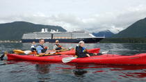 Harbor and Islands Guided Paddle, Sitka