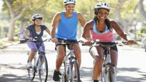 Chicago Southside Neighborhoods Bicycle Tour, Chicago, Bike & Mountain Bike Tours