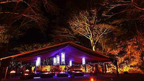 Cena en el Flames of the Forest en Cairns, Cairns & the Tropical North, Dining Experiences