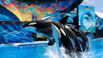 SeaWorld® Orlando Ticket, Orlando, Theme Park Tickets & Tours