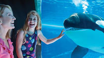 SeaWorld® San Diego, San Diego, Hop-on Hop-off Tours