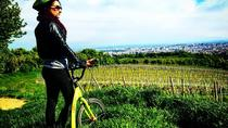 Vineyards of Vienna Downhill Scooter Tour with Panoramic Views, Vienna, Vespa, Scooter & Moped Tours