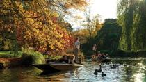 Punting on the Avon River with Optional Christchurch Gondola and Botanic Gardens Tour, ...