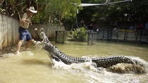 Cairns Shore Excursion: Hartley's Crocodile Adventure Day Trip, Cairns & the Tropical North,...
