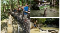 Hartley's Big Crocodile Feeding Experience from Cairns, Cairns & the Tropical North, Day Trips