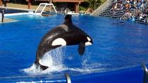 Los Angeles to San Diego Multi-Day Tour Including Sea World Tickets, Los Angeles, Multi-day Tours
