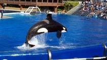Multi-Day Trip from Anaheim to San Diego and Admission to SeaWorld, ,