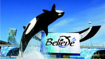 SeaWorld San Diego with Transport, Anaheim & Buena Park, Theme Park Tickets & Tours