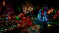 Butchart Gardens Holiday Lights and Dinner, Victoria, Bike & Mountain Bike Tours