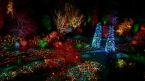 Christmas in Victoria: Holiday Lights Tour and Butchart Gardens Including Dinner, Victoria