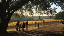 Private Family Owned Winery Tour, Napa & Sonoma, Wine Tasting & Winery Tours