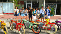 Honolulu Vintage Electric Bike Tour: Into the core of the Diamond Head Crater, Oahu, Bike Rentals
