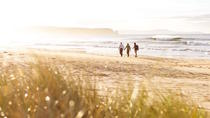 3-Day Small Group Bruny Island Guided Walk from Hobart, Hobart, Multi-day Tours