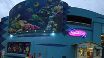 Cancun Interactive Aquarium Admission Ticket, Cancun, Attraction Tickets