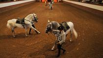 Jerez and Cádiz Day Trip from Seville Including Sherry Tasting, Andalusian Horse Show and...