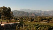 Private Tour: Aconcagua Valley Day Trip from Valparaiso Including Lunch, Valparaíso, Private...