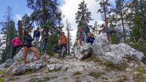 Yosemite and Tahoe Sierras Tour from San Francisco, San Francisco, 4-Day Tours