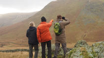 3-Hour Deer Watch Walk from Ullswater, Lake District