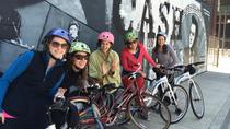 Bicycle Tour of Nashville, Nashville, Bike & Mountain Bike Tours